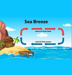 Science poster design for sea breeze vector