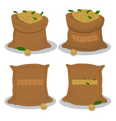 Bags filled with fruit yellow longan vector
