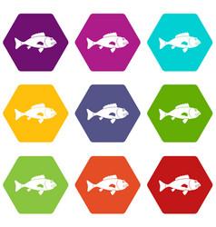 fish icon set color hexahedron vector image
