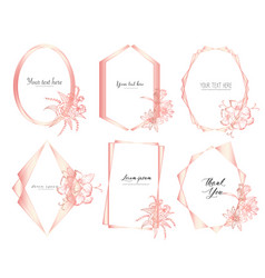 geometric frame with hand drawn floral vector image