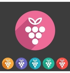 Grapes icon flat web sign symbol logo label vector image