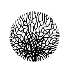 Graphic coral circle vector