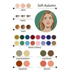 Seasonal color analysis palette for soft autumn vector