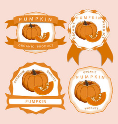 The yellow pumpkin vector