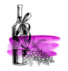 Wine grape bottle grape twig background vector