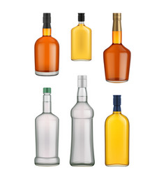 cognac whiskey and brandy bottle vector image