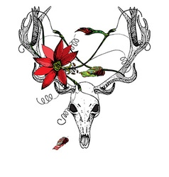 Deer Skull and passiflora vector