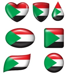 Palestine Flag in various shape glossy button vector image