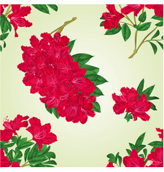 seamless texture rhododendrons twigs vector image