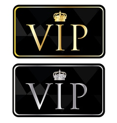 Silver and golden vip pass vector image