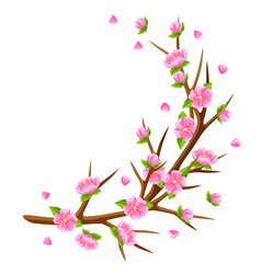Spring branch of tree and sakura flowers seasonal vector