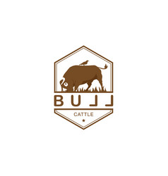 Vintage cattle buff and bird logo template with vector