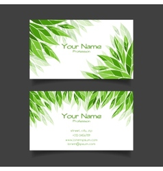 Business card with green leaves template vector image