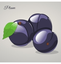 Cartoon sweet plum on grey background vector image