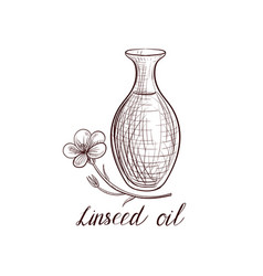 drawing linseed oil vector image