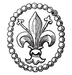 Fleur de lis has been used to represent french vector
