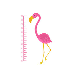 kids height chart and flamingo exotic bird with vector image