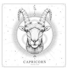 magic witchcraft card with capricorn zodiac sign vector image