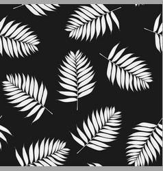 palm white leaves on black background vector image