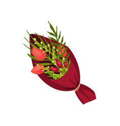 Three tulips are packed in burgundy paper vector