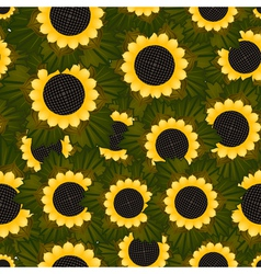 Seamless texture with sunflowers and green leaves vector image vector image