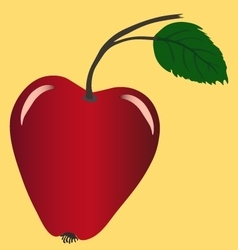 Apple image vector