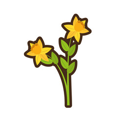 Cartoon daffodil flower spring floral vector
