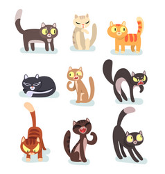 Flat set of different cats funny cartoon vector