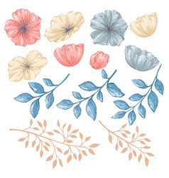 floral isolated elements vector image