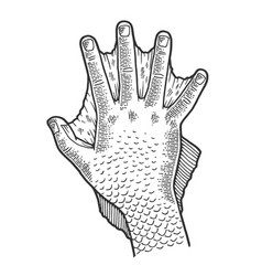 hand amphibian man sketch engraving vector image