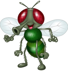 Cartoon happy fly isolated on white background vector image vector image