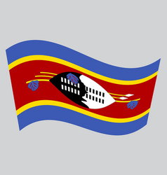 flag of swaziland waving on gray background vector image vector image