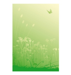 herbs background vector image