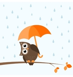 brown owl on the autumn tree vector image vector image