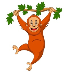Cute orangutan cartoon hanging on a tree branch vector image