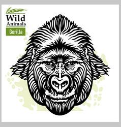 Gorilla head - symmetric front face graphic vector