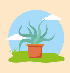 plants decoration gardening flat design vector image