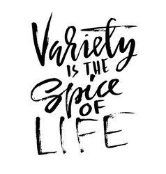 Variety is spice life hand drawn dry brush vector