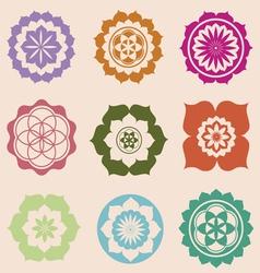 life seed mandalas designs vector image vector image