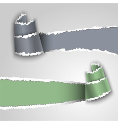 Ripped paper banners vector image vector image