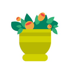 pot with flowers and leaves vector image