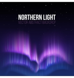 Aurora borealis northern light winter vector image