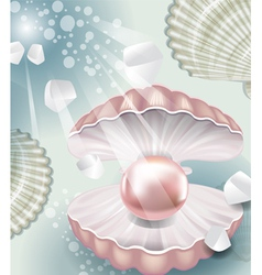 Background with pearl vector image