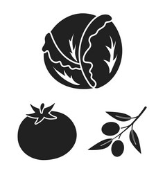 Different kinds of vegetables black icons in set vector