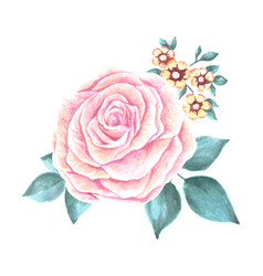 hand painted watercolor flower vector image