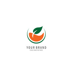 herbal drink symbol logo vector image