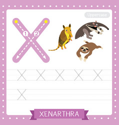 Letter x lowercase tracing practice worksheet of vector