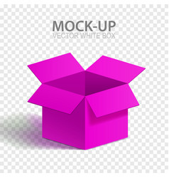 mock-up box vector image