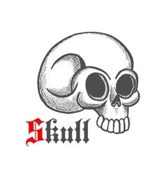 Monstrous human skull sketch symbol vector