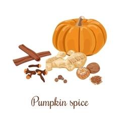 Pumpkin spice vector